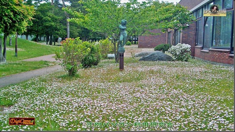 江別情報図書館の庭